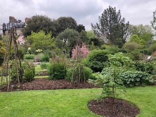 pic Chelsea Physics Garden